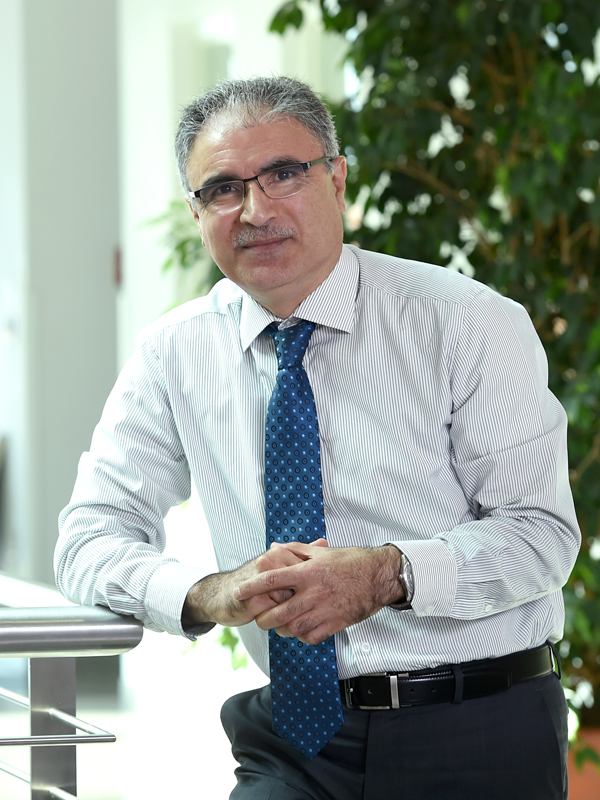 Faculty Mohammad Mroueh